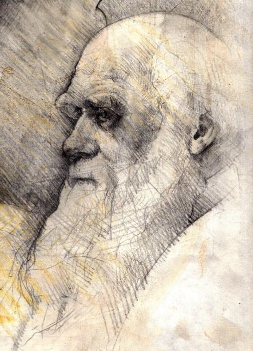 Charles Darwin par Spectrum